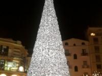 Salerno luci d'artista albero